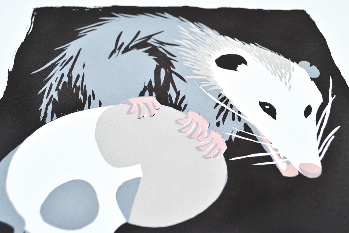 opossum3web1200